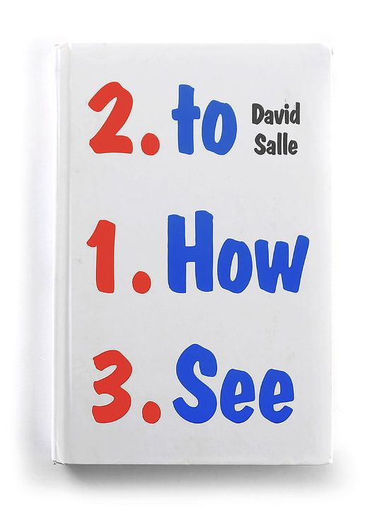 david-salle-how-to-see